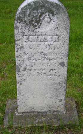 WILLIAMS, EMMOR - Branch County, Michigan   EMMOR WILLIAMS - Michigan Gravestone Photos