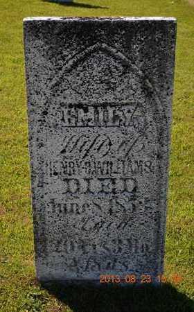 WILLIAMS, EMILY - Branch County, Michigan | EMILY WILLIAMS - Michigan Gravestone Photos