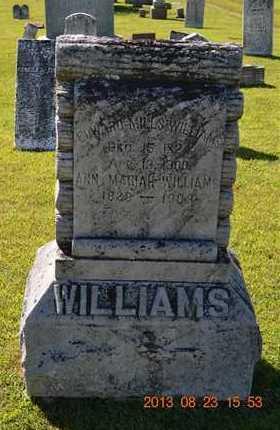 WILLIAMS, EDWARD MILLS - Branch County, Michigan   EDWARD MILLS WILLIAMS - Michigan Gravestone Photos