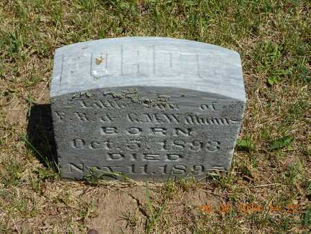WILLIAMS, FORD C. - Branch County, Michigan | FORD C. WILLIAMS - Michigan Gravestone Photos