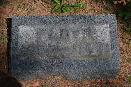 WILLIAMS, FLOYD - Branch County, Michigan | FLOYD WILLIAMS - Michigan Gravestone Photos
