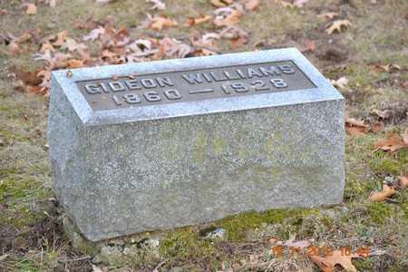 WILLIAMS, GIDEON - Branch County, Michigan   GIDEON WILLIAMS - Michigan Gravestone Photos