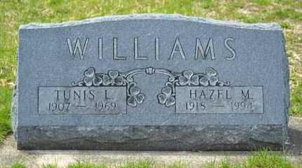 WILLIAMS, TUNIS L. - Branch County, Michigan | TUNIS L. WILLIAMS - Michigan Gravestone Photos