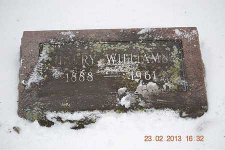 WILLIAMS, HARRY - Branch County, Michigan   HARRY WILLIAMS - Michigan Gravestone Photos