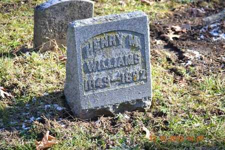 WILLIAMS, HENRY M. - Branch County, Michigan | HENRY M. WILLIAMS - Michigan Gravestone Photos