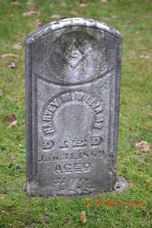 WILLIAMS, HARVEY M. - Branch County, Michigan | HARVEY M. WILLIAMS - Michigan Gravestone Photos