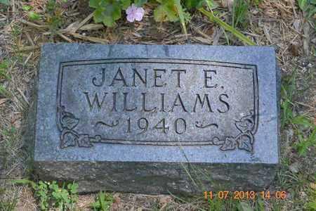 WILLIAMS, JANET E. - Branch County, Michigan   JANET E. WILLIAMS - Michigan Gravestone Photos