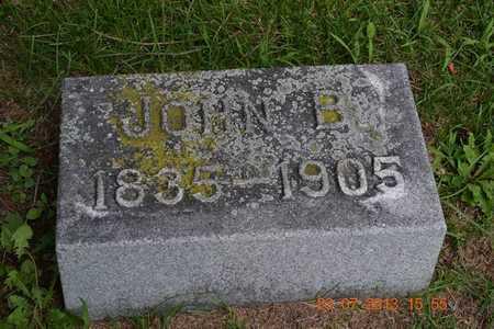 WILLIAMS, JOHN B. - Branch County, Michigan | JOHN B. WILLIAMS - Michigan Gravestone Photos