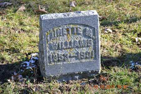 WILLIAMS, LUNETTE M. - Branch County, Michigan | LUNETTE M. WILLIAMS - Michigan Gravestone Photos