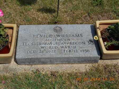 WILLIAMS, LEVI O. - Branch County, Michigan | LEVI O. WILLIAMS - Michigan Gravestone Photos