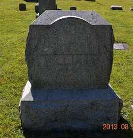 WILLIAMS, LOT MARKER - Branch County, Michigan | LOT MARKER WILLIAMS - Michigan Gravestone Photos