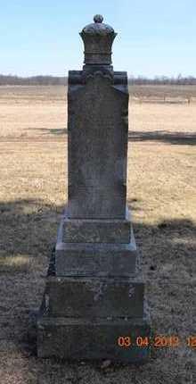WILLIAMS, MARTHA - Branch County, Michigan | MARTHA WILLIAMS - Michigan Gravestone Photos