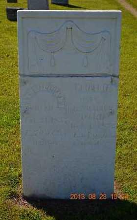 WILLIAMS, PHILENIA - Branch County, Michigan | PHILENIA WILLIAMS - Michigan Gravestone Photos