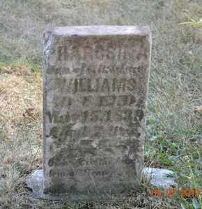 WILLIAMS, PHAROSINA - Branch County, Michigan   PHAROSINA WILLIAMS - Michigan Gravestone Photos