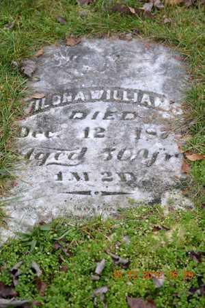 WILLIAMS, VILONA - Branch County, Michigan | VILONA WILLIAMS - Michigan Gravestone Photos