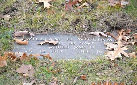 WILLIAMS, WILLIAM H. - Branch County, Michigan | WILLIAM H. WILLIAMS - Michigan Gravestone Photos