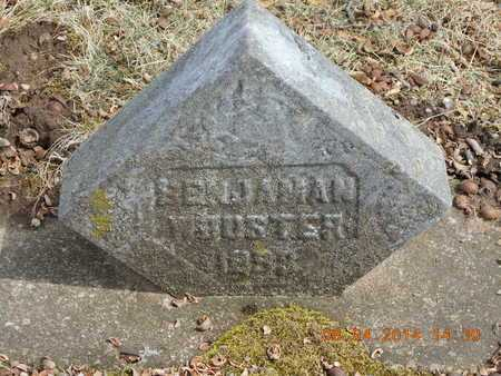 WOOSTER, BENJAMAN - Branch County, Michigan | BENJAMAN WOOSTER - Michigan Gravestone Photos
