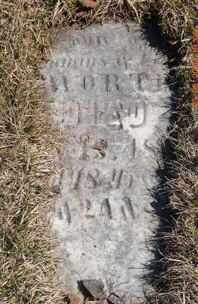 WORTH, ADDISON - Branch County, Michigan | ADDISON WORTH - Michigan Gravestone Photos
