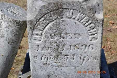WRIGHT, ALMERON J. - Branch County, Michigan | ALMERON J. WRIGHT - Michigan Gravestone Photos