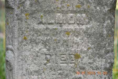 WRIGHT, ALMON - Branch County, Michigan | ALMON WRIGHT - Michigan Gravestone Photos