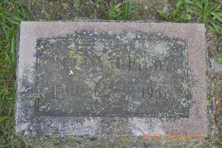 WRIGHT, CURTIS E. - Branch County, Michigan   CURTIS E. WRIGHT - Michigan Gravestone Photos