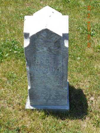 WRIGHT, GEORGE A. - Branch County, Michigan | GEORGE A. WRIGHT - Michigan Gravestone Photos