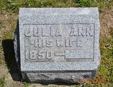 WRIGHT, JULIA ANN - Branch County, Michigan   JULIA ANN WRIGHT - Michigan Gravestone Photos