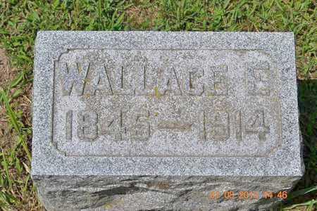 WRIGHT, WALLACE E. - Branch County, Michigan | WALLACE E. WRIGHT - Michigan Gravestone Photos
