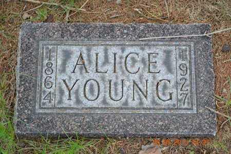 YOUNG, ALICE - Branch County, Michigan | ALICE YOUNG - Michigan Gravestone Photos