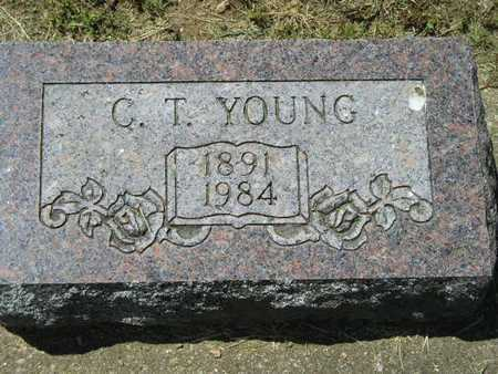 YOUNG, C.T. - Branch County, Michigan | C.T. YOUNG - Michigan Gravestone Photos
