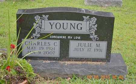 YOUNG, CHARLES C. - Branch County, Michigan | CHARLES C. YOUNG - Michigan Gravestone Photos