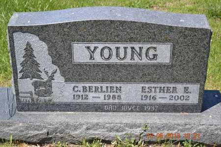 YOUNG, C. BERLIEN - Branch County, Michigan | C. BERLIEN YOUNG - Michigan Gravestone Photos
