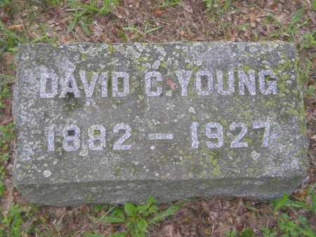 YOUNG, DAVID C. - Branch County, Michigan   DAVID C. YOUNG - Michigan Gravestone Photos