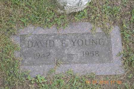 YOUNG, DAVID F. - Branch County, Michigan | DAVID F. YOUNG - Michigan Gravestone Photos