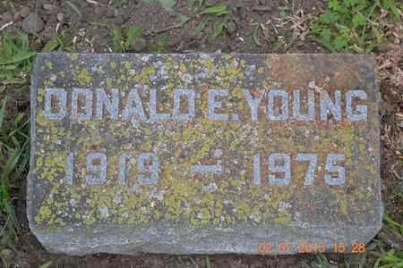 YOUNG, DONALD E. - Branch County, Michigan | DONALD E. YOUNG - Michigan Gravestone Photos