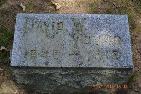 YOUNG, DAVID W. - Branch County, Michigan | DAVID W. YOUNG - Michigan Gravestone Photos