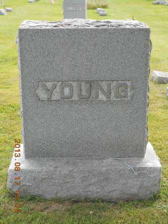 YOUNG, FAMILY - Branch County, Michigan | FAMILY YOUNG - Michigan Gravestone Photos