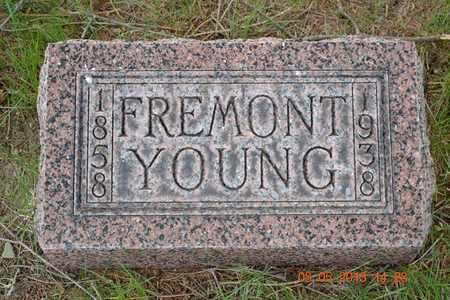 YOUNG, FREMONT - Branch County, Michigan | FREMONT YOUNG - Michigan Gravestone Photos