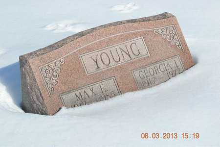 YOUNG, MAX E. - Branch County, Michigan | MAX E. YOUNG - Michigan Gravestone Photos