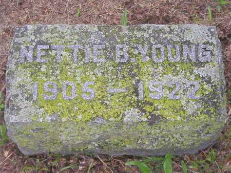 YOUNG, NETTIE B. - Branch County, Michigan | NETTIE B. YOUNG - Michigan Gravestone Photos