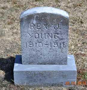 YOUNG, REX J. - Branch County, Michigan   REX J. YOUNG - Michigan Gravestone Photos