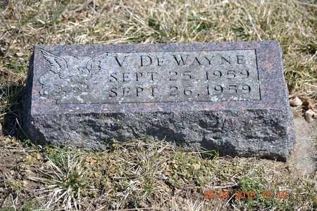 YOUNG, V. DE WAYNE - Branch County, Michigan | V. DE WAYNE YOUNG - Michigan Gravestone Photos
