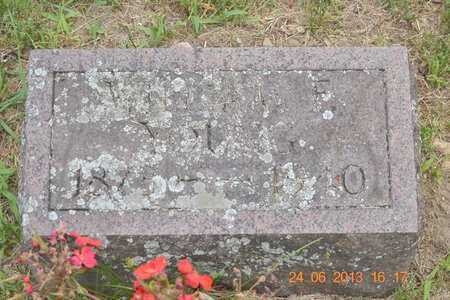 YOUNG, WILLIAM F. - Branch County, Michigan | WILLIAM F. YOUNG - Michigan Gravestone Photos