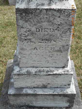 ACKERMAN, DAVID - Calhoun County, Michigan | DAVID ACKERMAN - Michigan Gravestone Photos