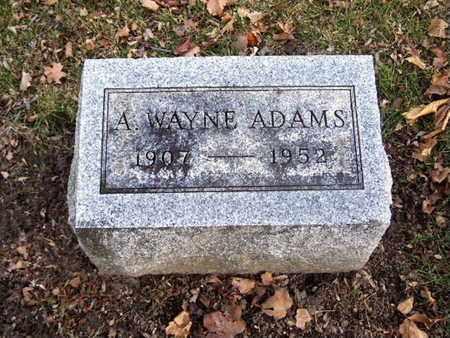 ADAMS, ARTHUR WAYNE - Calhoun County, Michigan | ARTHUR WAYNE ADAMS - Michigan Gravestone Photos