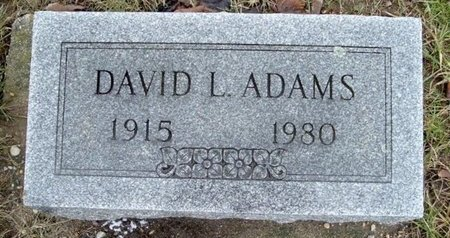 ADAMS, DAVID L. - Calhoun County, Michigan | DAVID L. ADAMS - Michigan Gravestone Photos