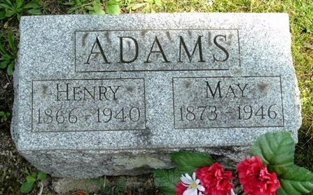 ADAMS, HENRY - Calhoun County, Michigan | HENRY ADAMS - Michigan Gravestone Photos