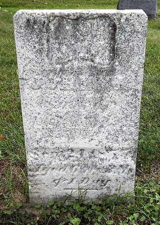 ADAMS, JOHN H. - Calhoun County, Michigan | JOHN H. ADAMS - Michigan Gravestone Photos