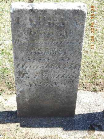 ADAMS, LAURA A - Calhoun County, Michigan | LAURA A ADAMS - Michigan Gravestone Photos