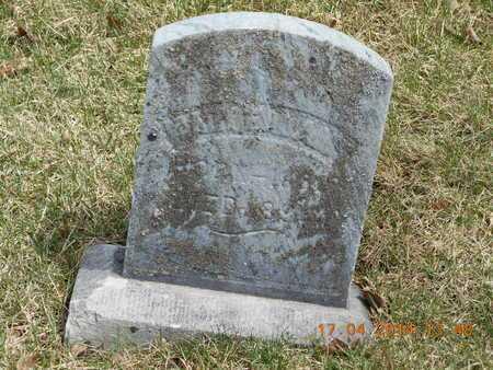 ADAMS, MARY - Calhoun County, Michigan   MARY ADAMS - Michigan Gravestone Photos